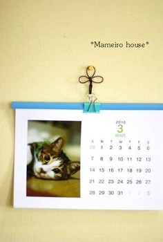 mameirohouse100306-2.jpg