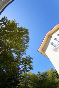 mameirohouse100917-11.jpg