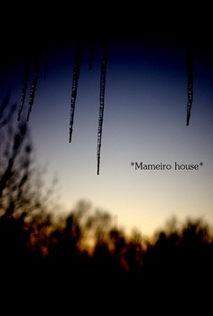 mameirohouse110228-9.jpg