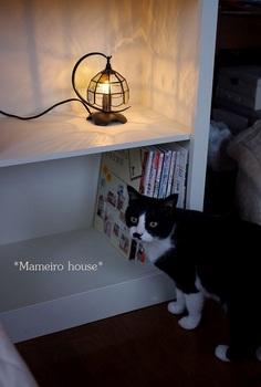 maneirohouse120506-18.jpg