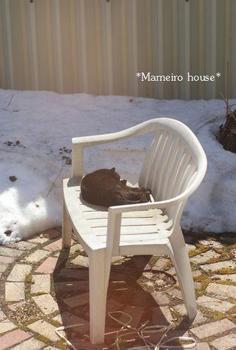 mameirohouse100409-7.jpg